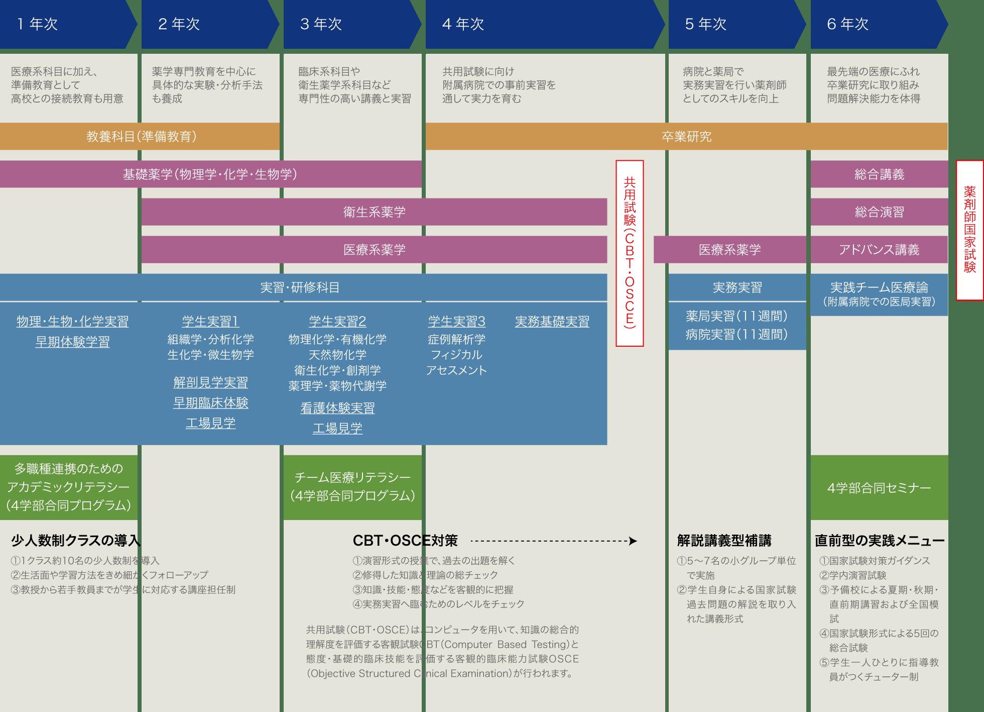 岩手医科大学薬学部でのカリキュラム/実習・研究